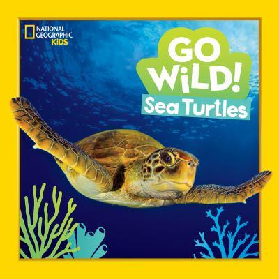 Sea turtles Book cover