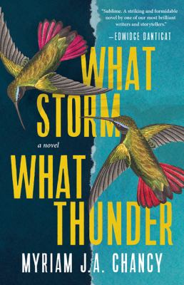 What storm, what thunder : a novel Book cover