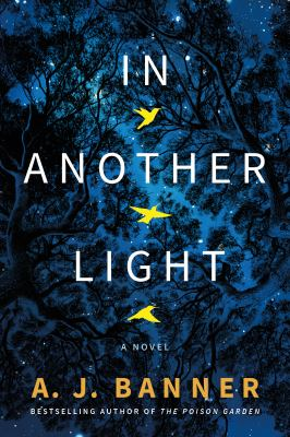 In another light : a novel Book cover