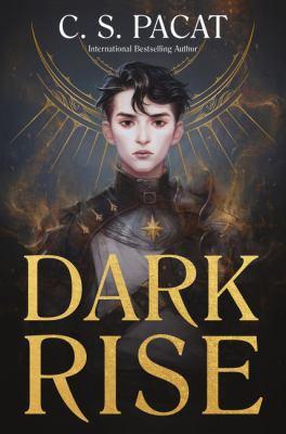Dark rise Book cover