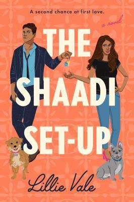 The Shaadi set-up : a novel Book cover